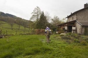 Met de bosmaaier het gras maaien zo hoog was het