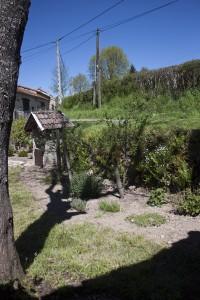 Detail van de tuin
