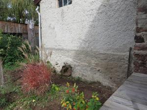 De planten in deze hoek zijn verwijderd voor een deur