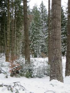 Een echt winterlandschap