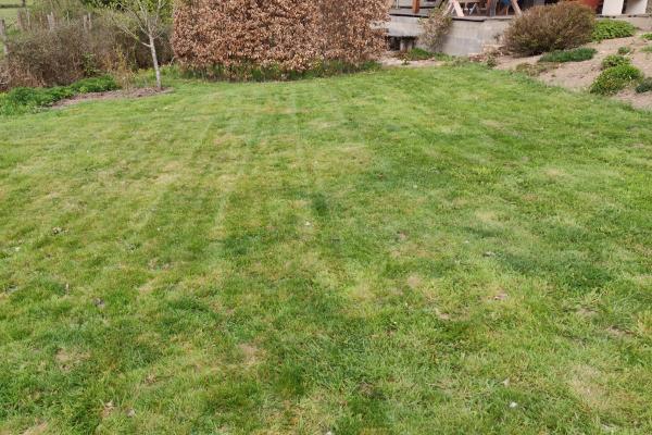 Ook nog maar even het gras gemaaid
