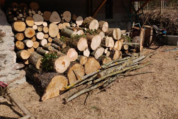 Dat is voorlopig weer genoeg hout