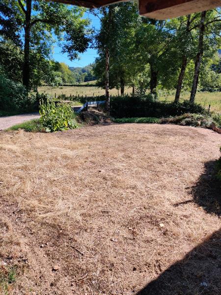 Het gras is wel dood op de pakeerplaats, maar was nog veel werk om te verwijderen